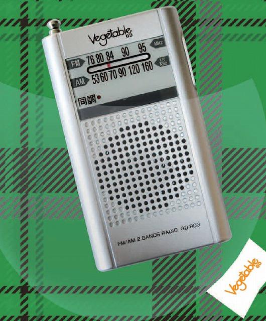 携帯型 ポケットラジオ ワイドFM対応 スピーカー内蔵 GD-R03