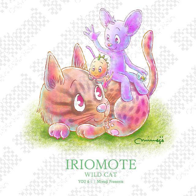 Iriomote Wild Cat【Adult size】
