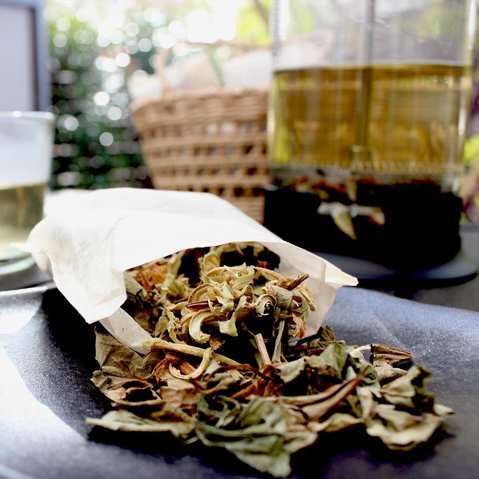 里山の野草茶