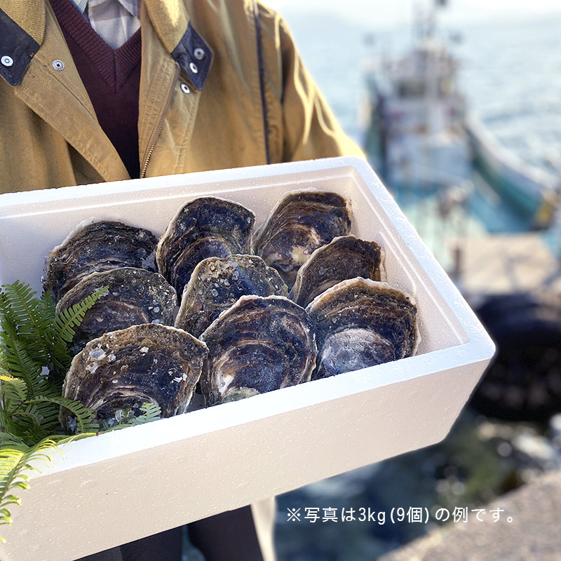 【送料無料】青海島特産の新鮮「岩がき」2kg〜