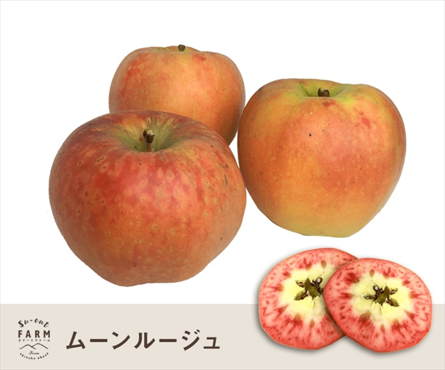 「11月中旬」訳あり ムーンルージュ 5キロ【長野県産】