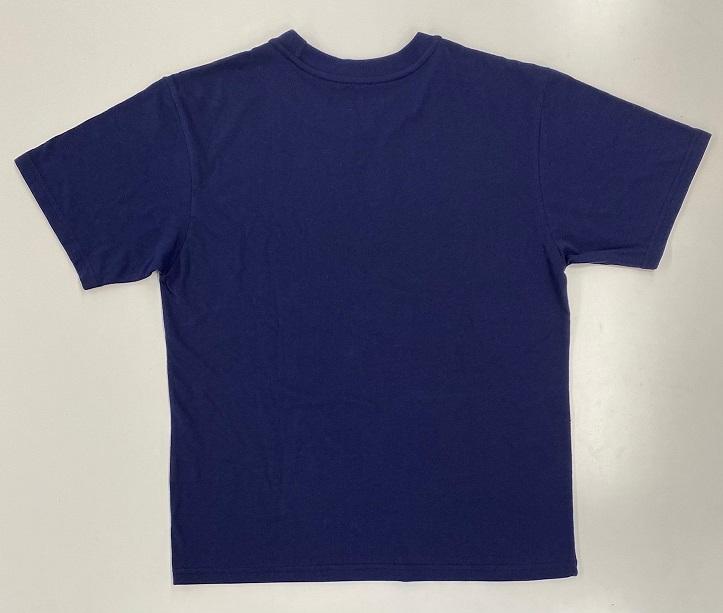 アナと雪の女王 東京限定Tシャツ L (リニューアル)