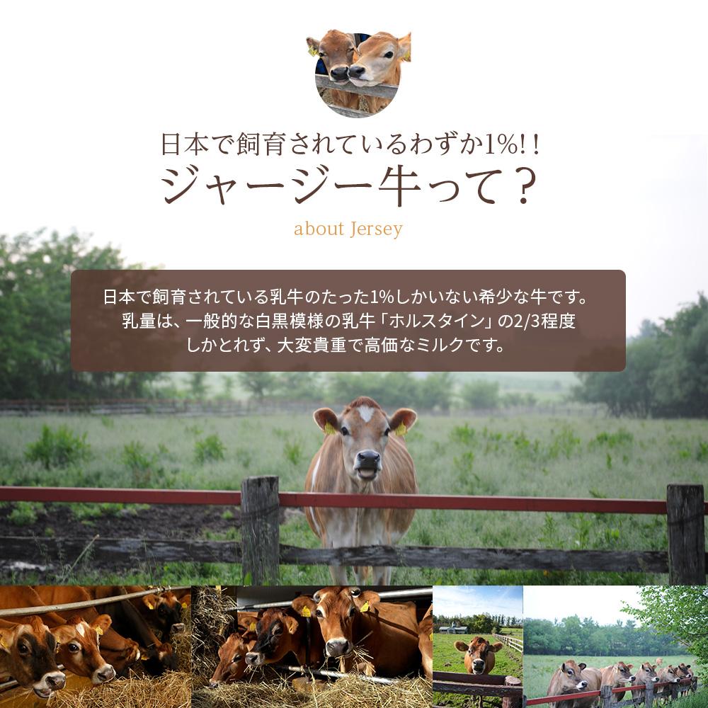 ジャージー牛乳セット900ml×6本