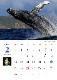 【小笠原】2021カレンダー 世界自然遺産・小笠原諸島/MANA