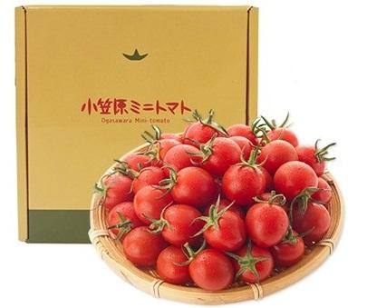 【母島】小笠原ミニトマト ※配送希望日指定不可の商品です。