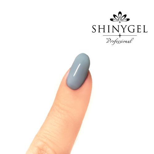 SHINYGEL Professional:カラージェル 244/スカイグレイ 4g (シャイニージェルプロフェッショナル)[UV/LED対応○](JNA検定対応) $