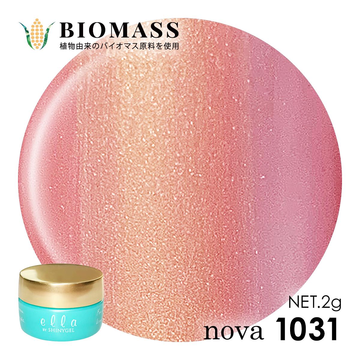 nova1231