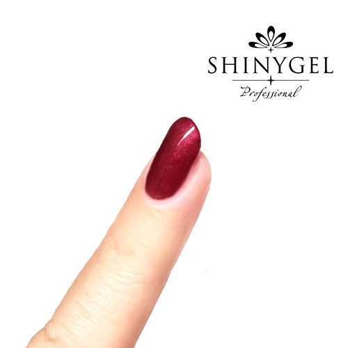 SHINYGEL Professional:カラージェル 224/ヴィンテージワイン 4g (シャイニージェルプロフェッショナル)[UV/LED対応○](JNA検定対応) $