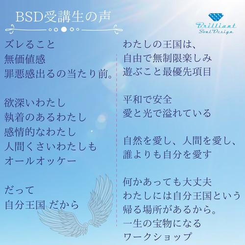 BSD(brilliant  soul  design  method) アドバンス�