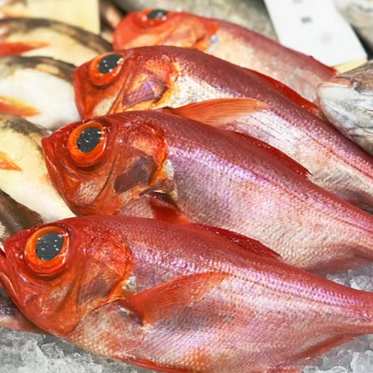 静岡沼津 金目鯛の煮付け300g×5パック  冷凍 簡単 まるごと 温めるだけ ご家庭で簡単にプロの味 5尾 特上干物