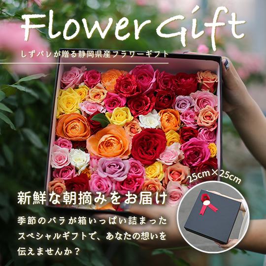 バラいっぱいギフトボックス 誕生日 記念日 プレゼント ギフト バラ風呂 バラ品評会などで多数の受賞 季節のバラ混合 25㎝角ボックス