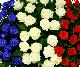 【スタンド生花】御祝生花スタンド(特殊オーダータイプ) 青・白・赤系
