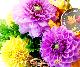 【敬老の日アレンジ】 秋てまり-あきてまり- 【宅配100cmサイズ】