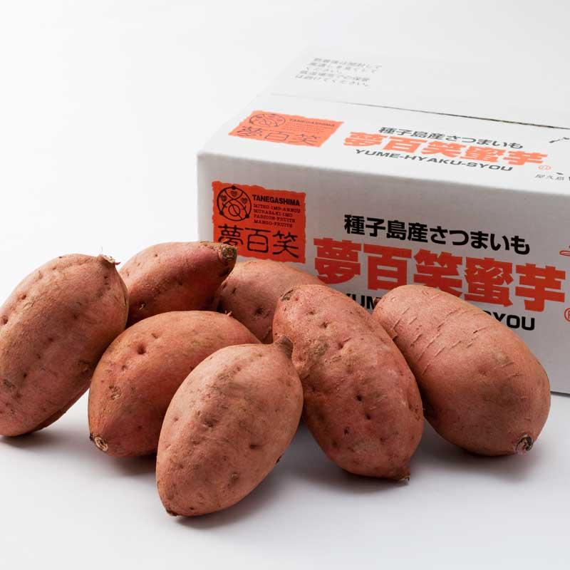 【産地直送/送料込】 〈夢百笑〉種子島蜜芋(安納芋) 2kg