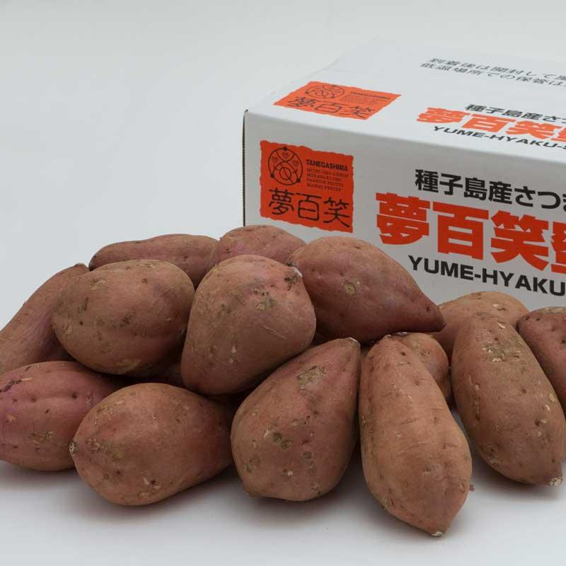 【産地直送/送料込】 〈夢百笑〉種子島蜜芋(安納芋) 5kg