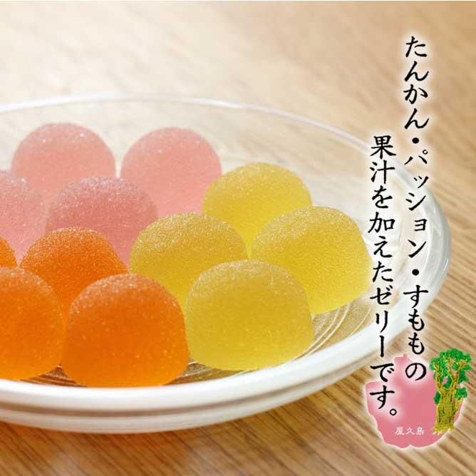 【産地直送/送料込】〈屋久島ふれあい食品〉IBEXオリジナルたんかんセット