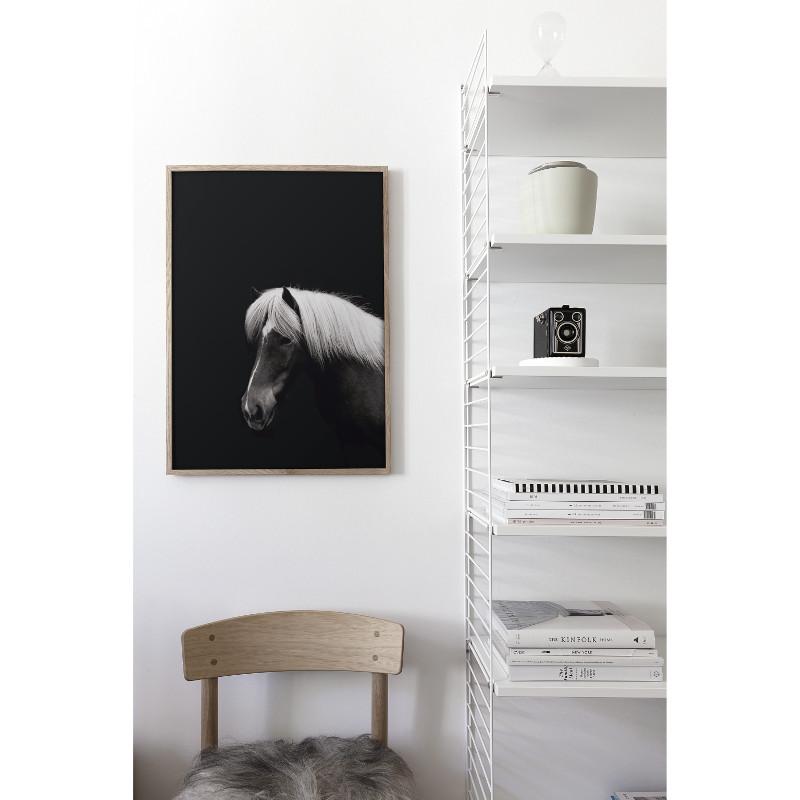 Coco Lapine Design HESTUR アートプリントポスター 50x70cm ベルギー/ドイツ