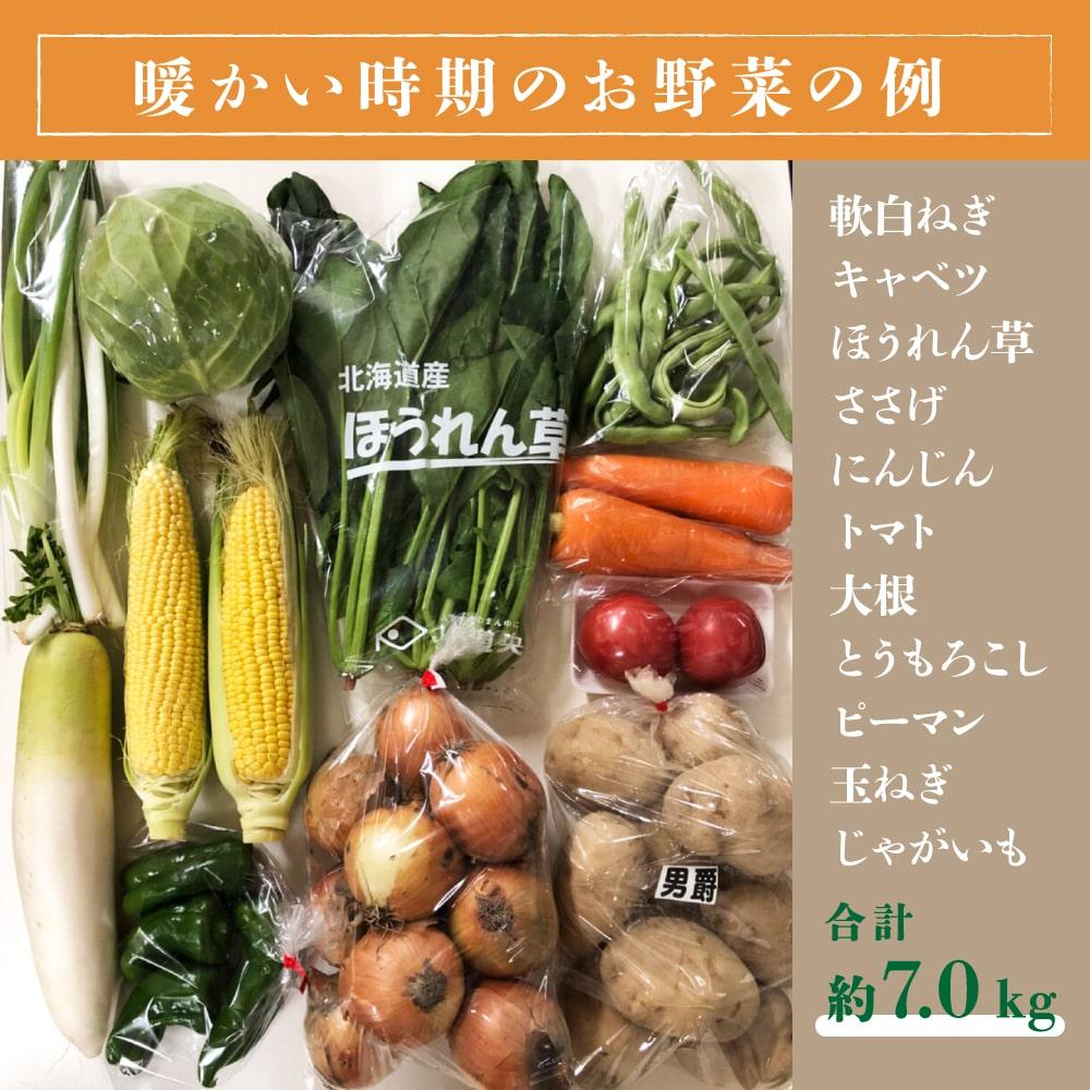 北海道野菜マーケット 北海道産 野菜セット 旬の新鮮お野菜詰め合わせ 9品種以上 約6〜8kg 100サイズ 調理しやすい常備野菜がメインのつめあわせ 送料無料 コロナ 対策 応援