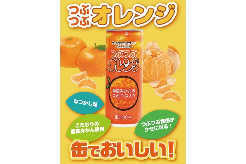 【札幌市】アウトレット!【終売】 つぶつぶオレンジ缶250g 30本入り
