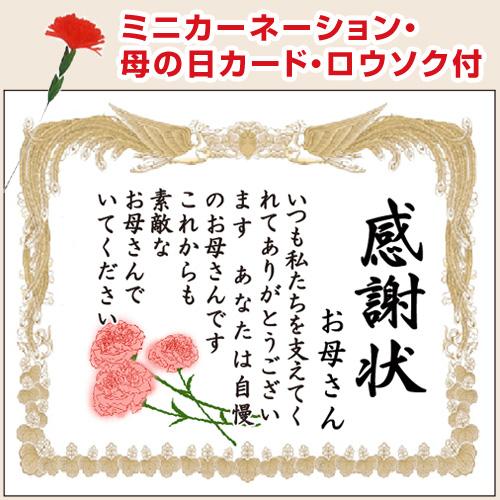 【送料無料】10号サイズ キャラメル味 / 母の日 感謝状ケーキ (名入れ) ミニカーネーション付き / 父の日 洋菓子 スイーツ お菓子 おかし 贈り物 お祝い 喜ばれる 記念日 挨拶 感謝 ありがとう