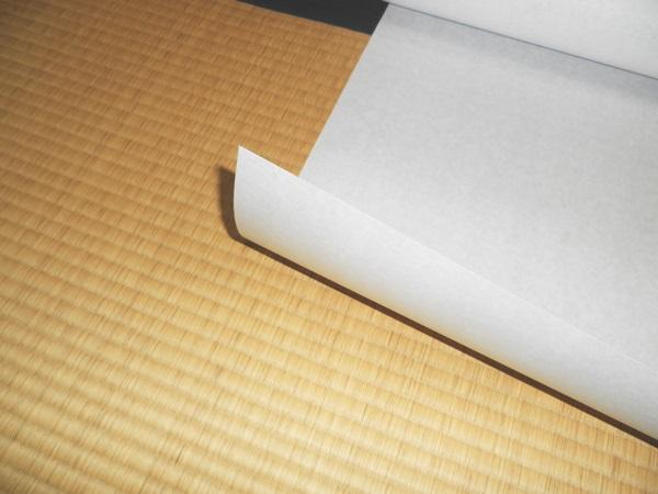 【93cm×185cm】プラスチック 障子紙(障子/しょうじ紙/ペット/犬猫/イヌネコ/キズ/丈夫/強化/張替/通販)