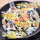 釧之助の焼鮭手ほぐし160g