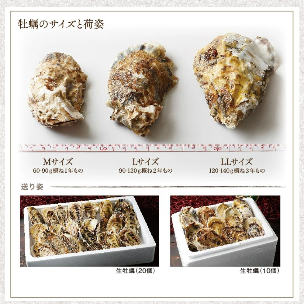 【送料無料】生牡蠣2Lサイズ20個 北海道厚岸産(殻付き)産地直送