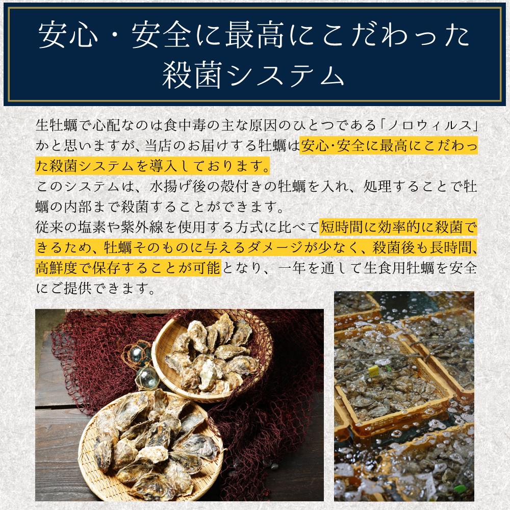 【送料無料】生牡蠣Mサイズ30個 北海道厚岸産(殻付き)産地直送