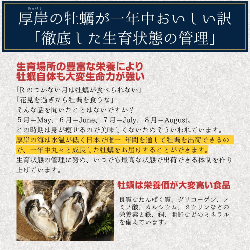 【送料無料】生牡蠣2Lサイズ30個 北海道厚岸産(殻付き)産地直送