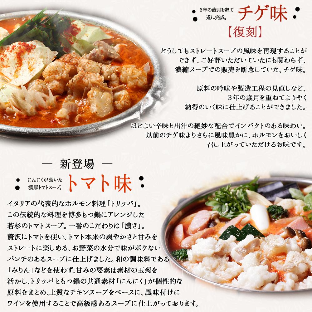 【送料無料】博多若杉 牛もつ鍋セット(4〜5人前)