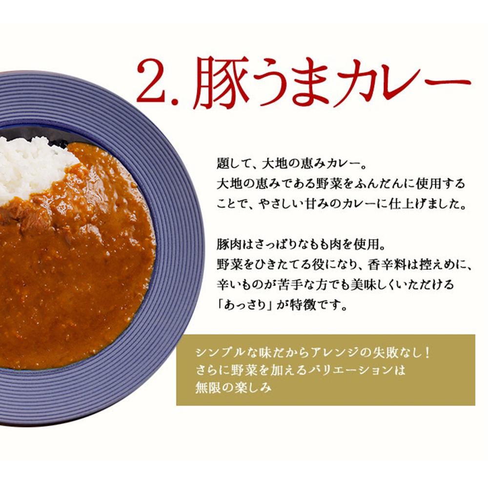 【送料無料】博多若杉 カレー200g×3食セット【アソート】ビーフ 豚うま 鶏とまとばたー