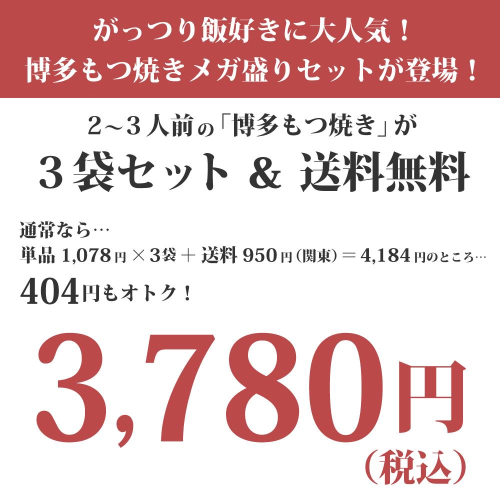 送料無料 メガ盛り!博多もつ焼き(2〜3人前)×3セット