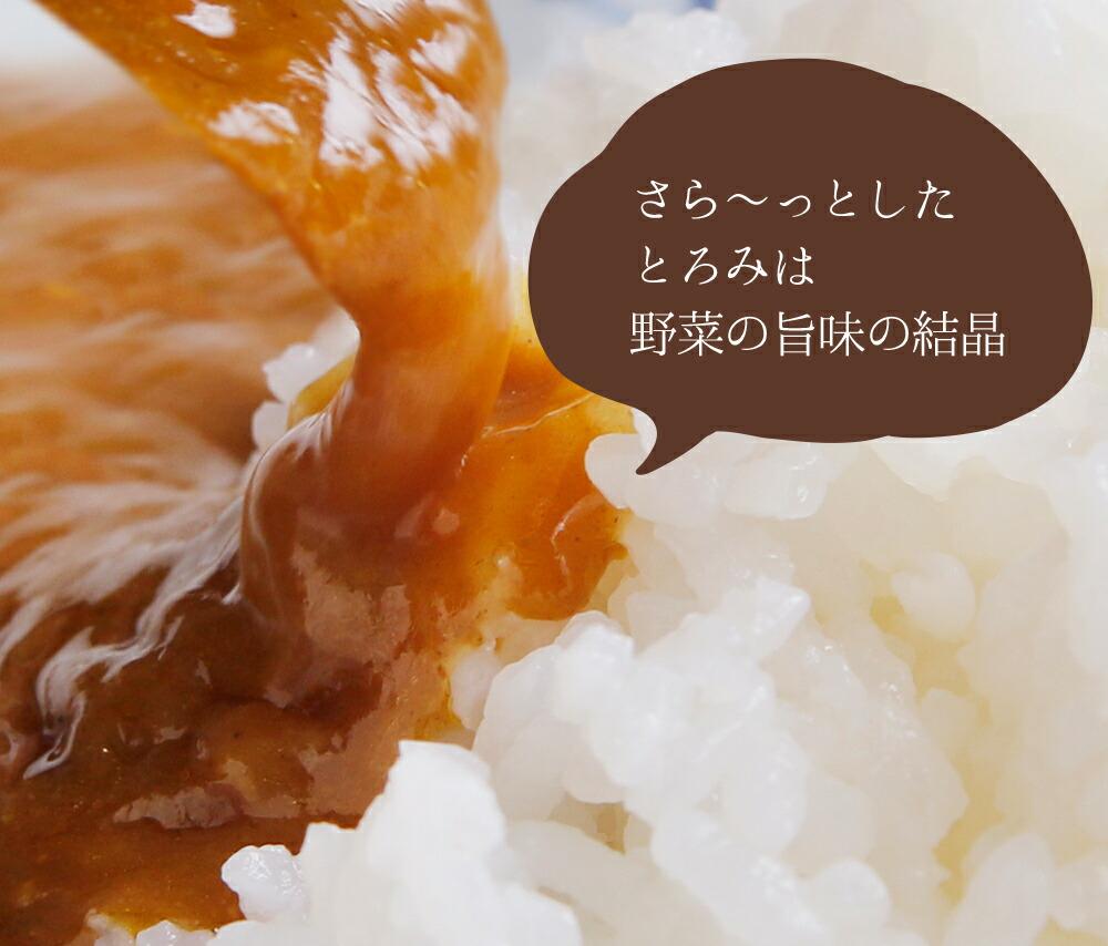 【送料無料】★まとめ買い★博多若杉 豚うまカレー レトルト インスタント
