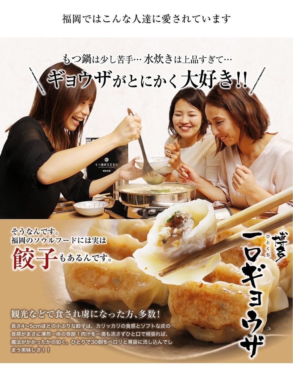 博多若杉 プレミアム 炊き餃子2〜3人前セット