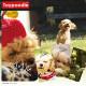 犬 スマホケース 全機種対応 手帳型 携帯 カバー (xperia8 aquos sense3 lite Xperia 1 Pixel 3a Galaxy F-02L LG K50 TONE e19 HUAWEI nova lite 3 URBANO V04 Galaxy S10) デザイン トイプードル ペット いぬ ワンちゃん 小型犬 かわいい