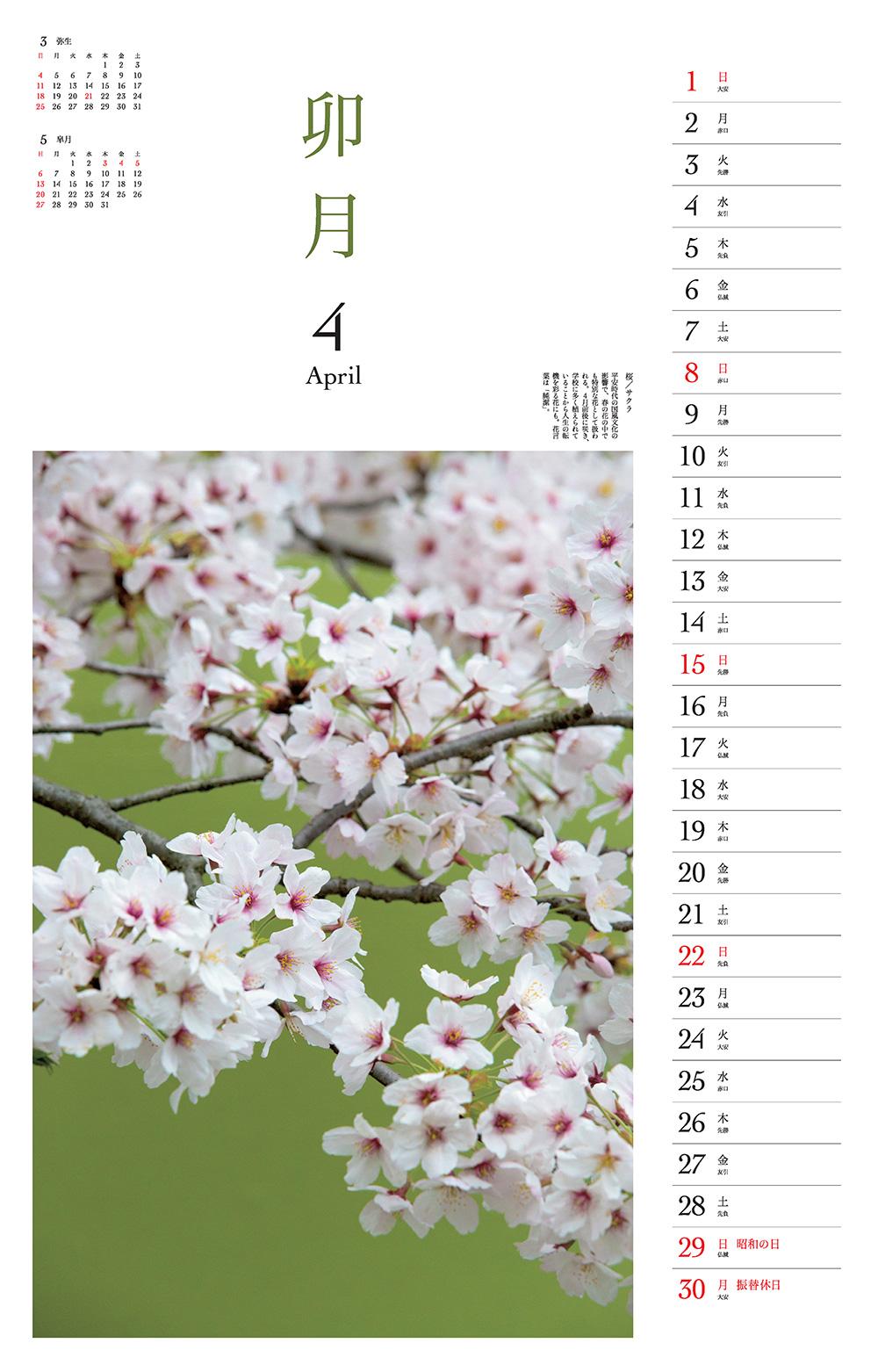 カレンダー2018 季節の花