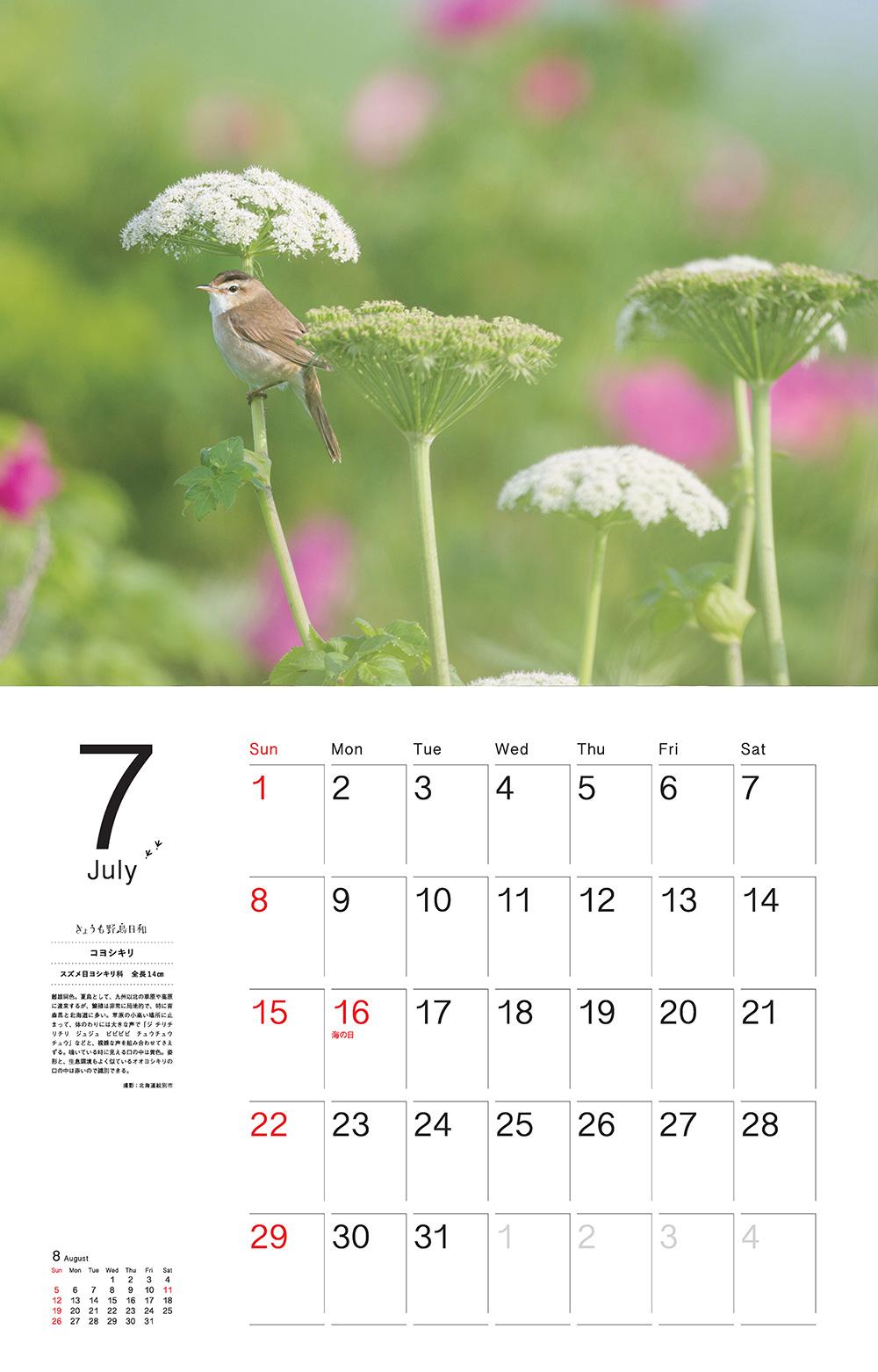 カレンダー2018 きょうも野鳥日和