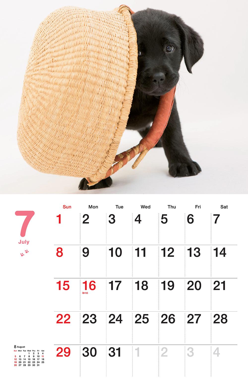 カレンダー2018 子犬の瞳