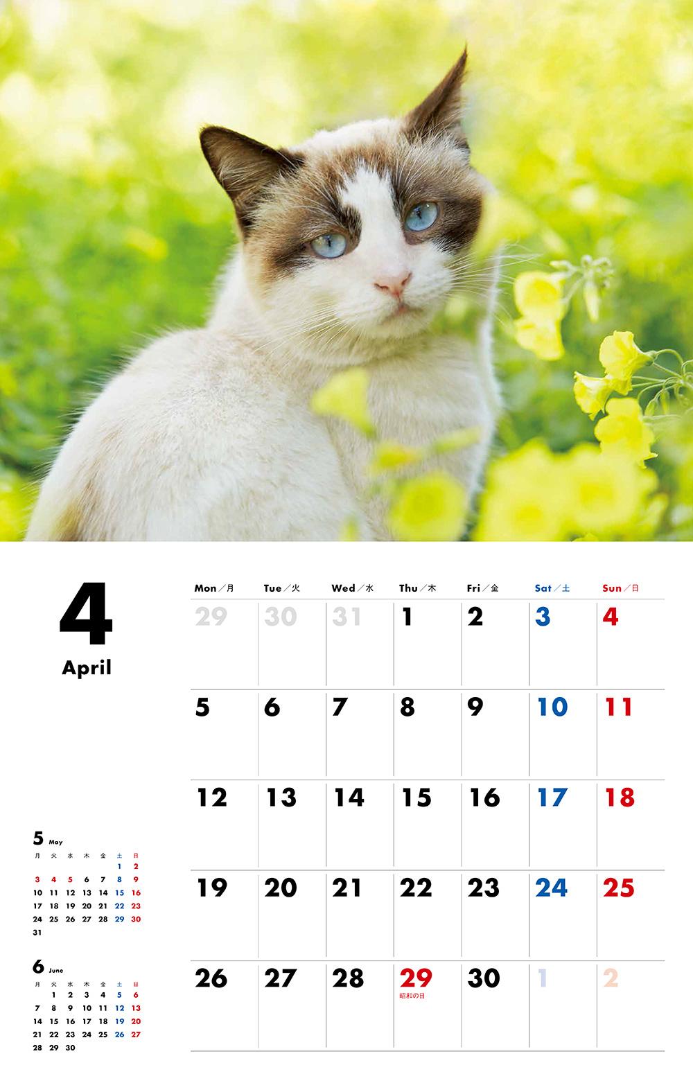 カレンダー2021 にゃんこ[月曜始まり]