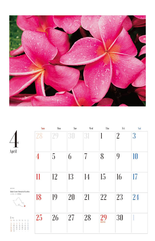 カレンダー2021 眺めていたいハワイの風景