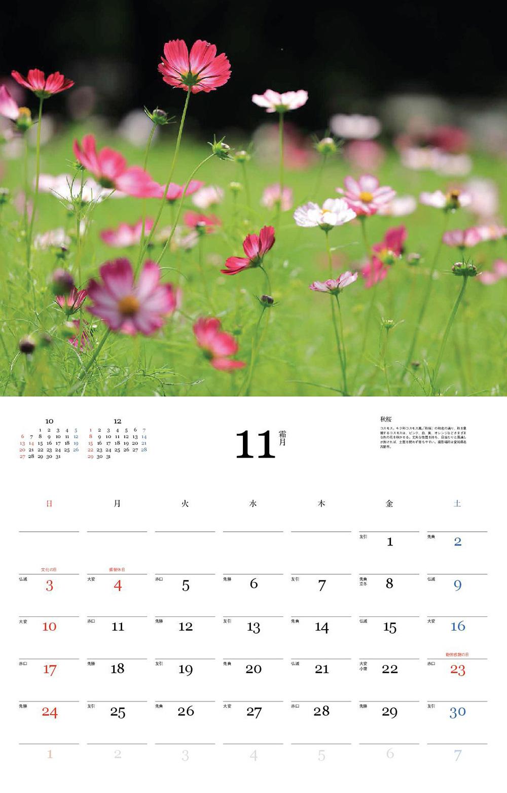 カレンダー2019 四季の花
