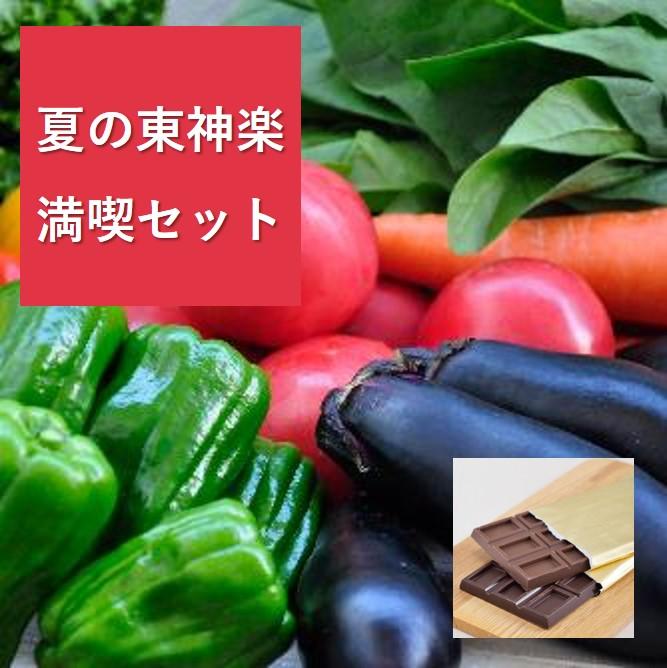 【送料無料】夏野菜10品目と種と実2商品セット