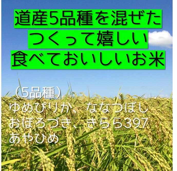 【送料無料】東神楽町北斗米「ゆきのつや」(5�)