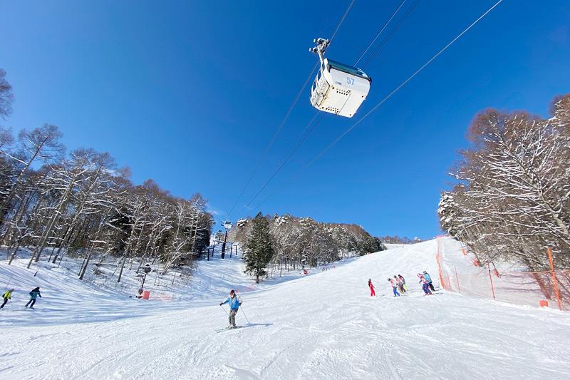 富士見パノラマ 1日券[大人]