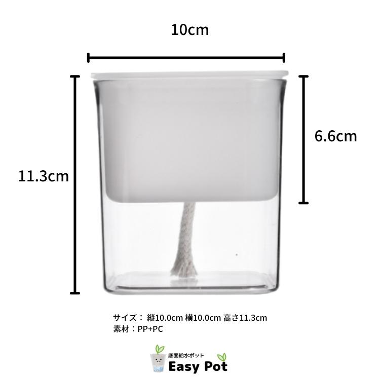 楽しい 寄せ植え コンシンネモデル Hシリーズ 304 ホワイト