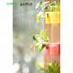 【おまかせセット】 コミドリ セットモデル314  オレンジ (ミドリエ給水ボトル無し)