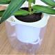 イージーポット 縁起の良い 幹太パキラ 底面給水ポット Aシリーズ 01 (シャンパンゴールド)