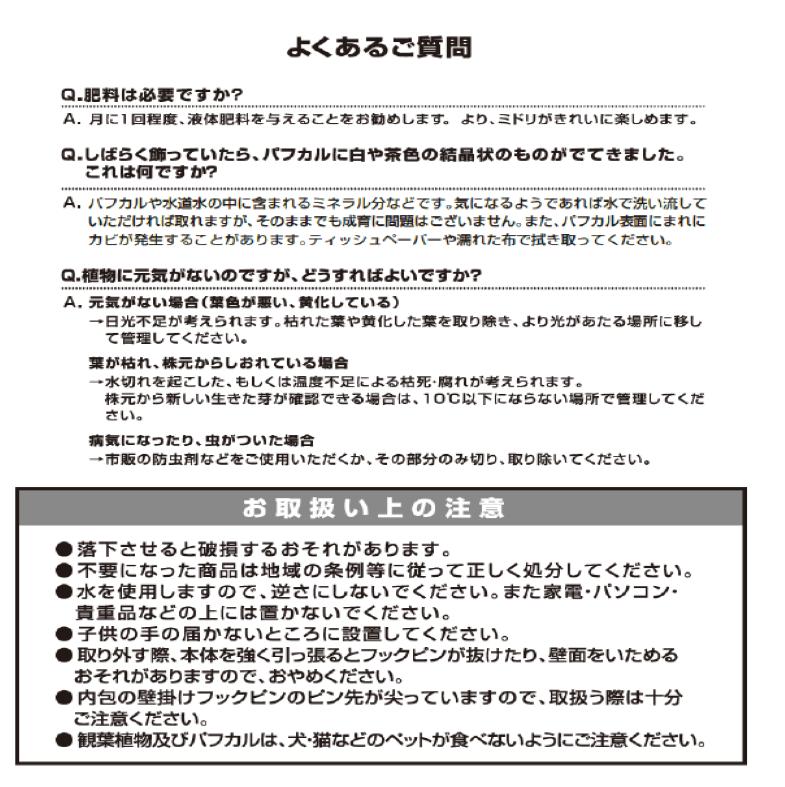 イージーポット 縁起の良い 幹太パキラ 底面給水ポット Aシリーズ 01 (シルバーゴールド)