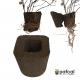 当店限定: 大きく育てるシリーズ ぐんぐんセット 観葉植物 専用  ミニパフカルx3号パフカル 10個セット