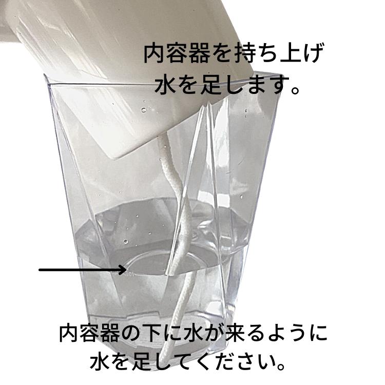 イージーポット カラテア ルフィバルバ 底面給水ポット Mシリーズ 02